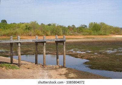Lake During Drought