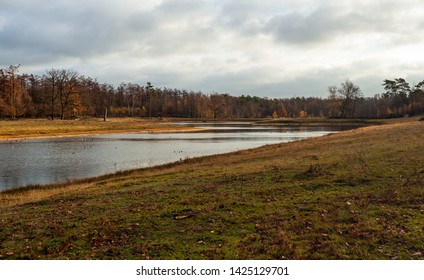 Lake in a Dutch forest. The photo was taken early in the morning of a cloudy day in nature reserve Boswachterij Dorst, Oosterhout, North Brabant.