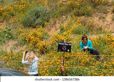 Lake Elsinore, California - March 22, 2019: Tourists clearly disrespecting signs and breaking rules, posing by a Please Stay Off sign with the poppies at Walker Canyon during superbloom