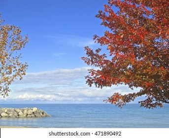 Lake and fall colors, autumn leaves. A fall view of Lake MIchigan from a lakefront public beach shoreline (Forest Park Beach in Lake Forest Illinois)