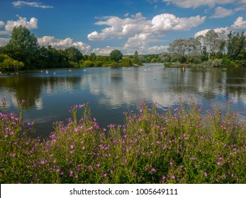 Lake at Ferry Meadows park, Peterborough, England