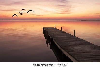 Lake flying colors
