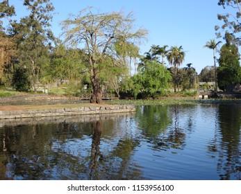 Lake and footbridge in garden at Roma Street Parklands, Brisbane, Australia