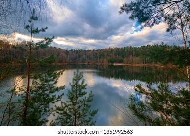 the lake in the forest