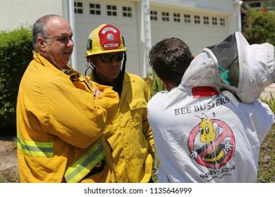 Lake Forest, California 7-16-2018: Africanized Honey Bees aka KILLER BEE'S Swarm Firefighters and Critically Sting a Woman in Lake Forest, California. Woman and 3 Fire Fighters taken to hospital.