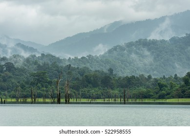 Lake and forest under blue sky,Khao Sok in Thailand