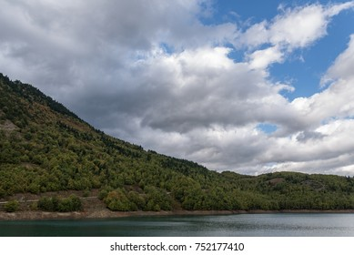 Lake and forest under a cloudy sky