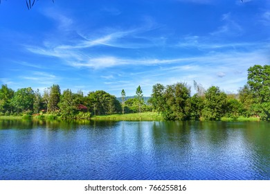 The lake in front of meadows and trees. The sky is clear in bright weather