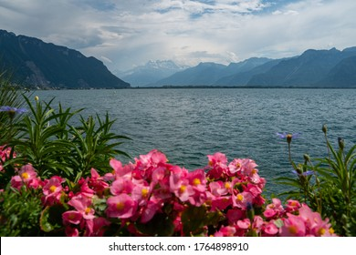 Lake Geneva in Montreux with colourful flowers in the foreground on a sunny day with clouds in the sky and the alps in the background