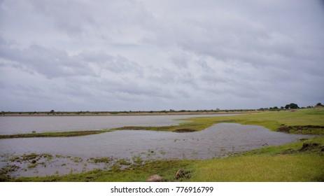 lake grass clouds