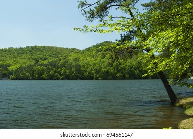 Lake Guntersville in Alabama