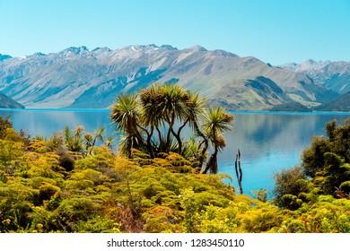 Lake Hawea lookout, New Zealand
