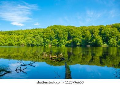 Lake Herthasee  in the National Park Jasmund near Sassnitz on the island of Rügen