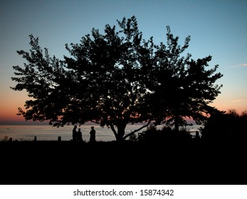 Lake Huron Silhouette