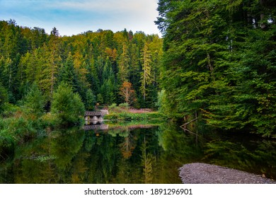 Lake Jarevac  a beautiful place surrounded by forest and small dam, near palce Mala Reka small river - Shutterstock ID 1891296901