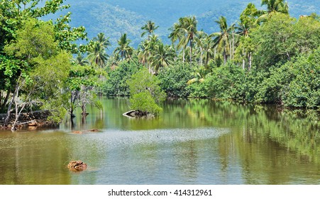 Lake in the jungles of Asia