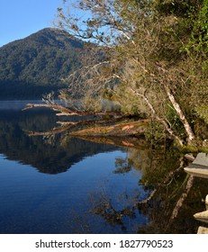 Lake Kaniere Shoreline Relections in Spring, New Zealand