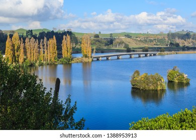 Lake Karapiro on the Waikato River, New Zealand. A Bridge Across the Lake and a Row of Autumn Poplar Trees