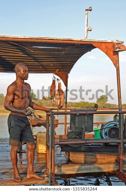 Lake Kariba, Zimbabwe 2018. Local Fisherman holding a hand full of bait fish while standing on his boat fishing.   Fishing is the main source of food and income for the local people.