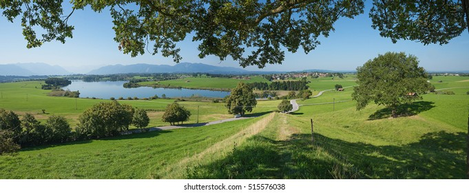 lake land riegsee and view to the alps, bavarian summer landscape