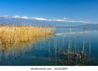 lake landscape with silhouette of reeds reflected in water