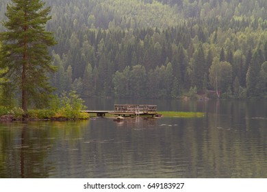 Lake landscape with spruce in the foreground and wooden bathing-place. Summer cloudy day.