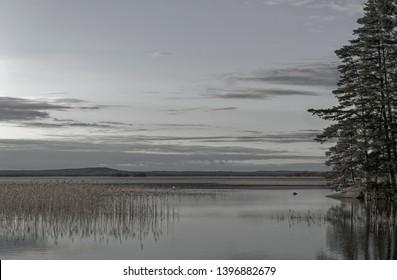Lake landscape at summer. Colours muted little bit