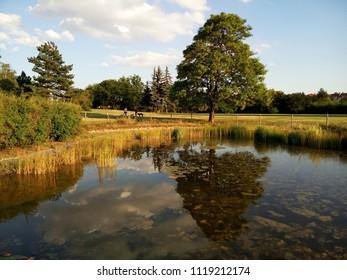 The lake like a mirror