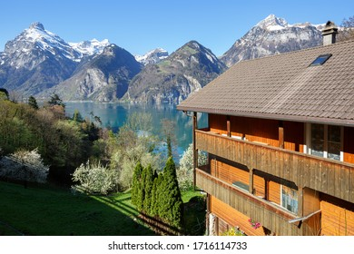 Lake Lucerne near the town of Sisikon on a sunny spring day. View of the snow-capped Alps. Canton of Uri, Switzerland.