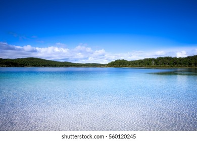 Lake Mackenzie on Fraser Island off the Sunshine of Queensland is a beautiful freshwater lake popular with tourists who visit Fraser Island. Queensland, Australia.
