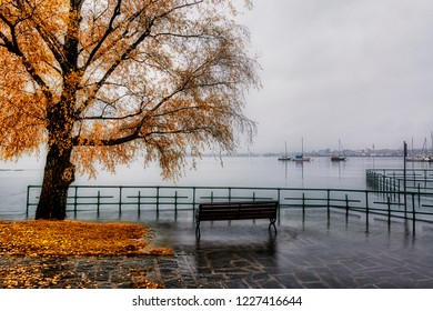 the Lake Maggiore overflows in autumn season with bench and tree in foreground and foggy skyline of Arona in background