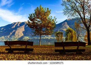 lake Maggiore, view from Locarno lake park
