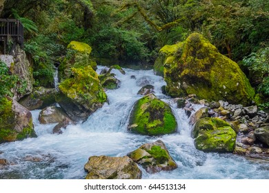Lake Marian fall located in the Fiordland National Park, Milford sound, New Zealand