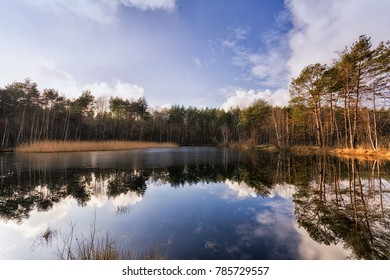 Lake and marsh in the Mazovian Landscape Park in Poland.
