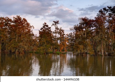 Lake Martin swamp just after sunrise.  Lake Martin is located in Breaux Bridge, Louisiana in the heart of Cajun Country.