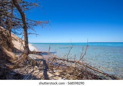 Lake Michigan beach at Sleeping Bear Dunes national park in northern Michigan