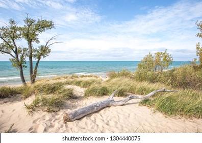 Lake Michigan shoreline and beach