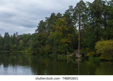 "A lake in the middle of the autumn forest in the ""Pushcha Voditsa"" area in Kyiv. Ukraine"