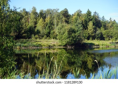 Lake in the Moscow region