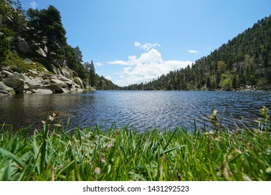 Lake in the mountain with grass in foreground, France, Pyrenees-Orientales, Estany Llarg, natural park of the Catalan Pyrenees, Occitanie