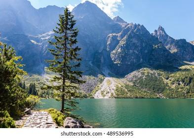 Lake in the mountains Morskie Oko