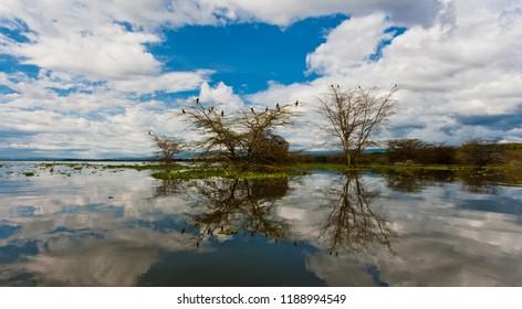 Lake Naivasha in Kenya