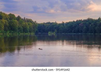 Lake near the Konopiste castle in the evening sun.