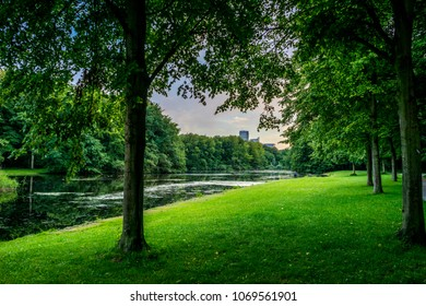 Lake next to green grass at Haagse Bos, forest in The Hague, Netherlands, Europe
