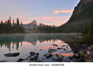 Lake O'Hara and Cathedral Mountain at sunrise, Yoho National Park, Canada