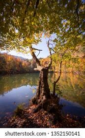Lake on  Autumn at Yedigoller National park