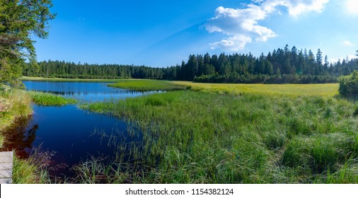 Lake on top of mountain, dark colored water and vibrant green grass, surrounded with trees, Crno jezero or Black lake is a popular hiking destination on Pohorje, Slovenia