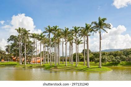 Lake and palms in East Park (Parque del Este), in Caracas, Venezuela