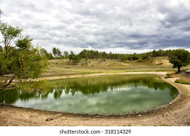 lake in the pine forest