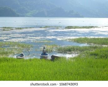 Lake Pokhara (Nepal)